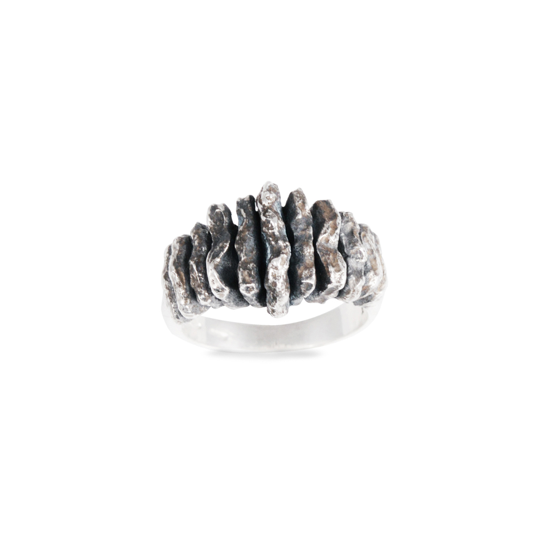 Agrostine - Rawsen silver ring