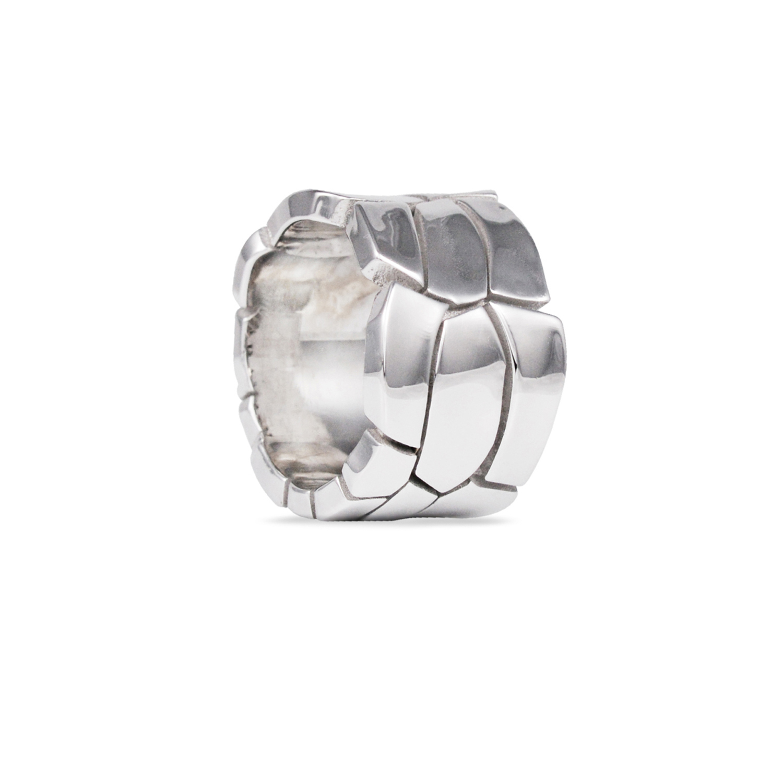 Pegee - Rawsen's silver ring